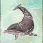 Beleggen & een dolfijn is een betere belegger