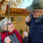Inkomensgarantie voor ouderen (België)