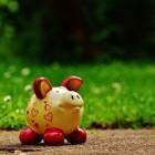 Lijfrente banksparen: Wat is het en wat zijn de voordelen?