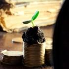 Passief inkomen: 5 manieren om het te verwerven